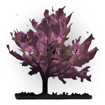 graphisme d'un arbre